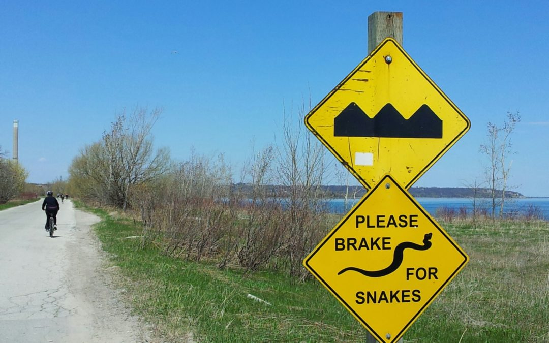 Road sign on Leslie Street Spit